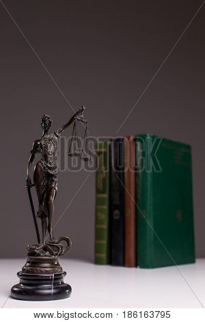 Themis on the background of the books.
