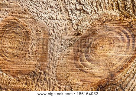 Close Up View Abstract Brown Wooden Texture, Plank