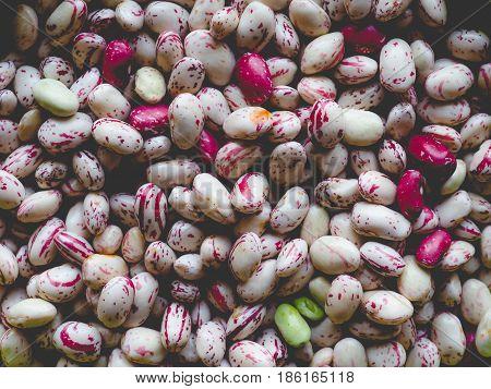 Crimson Beans Legumes Vegetables, Faded Vintage Look