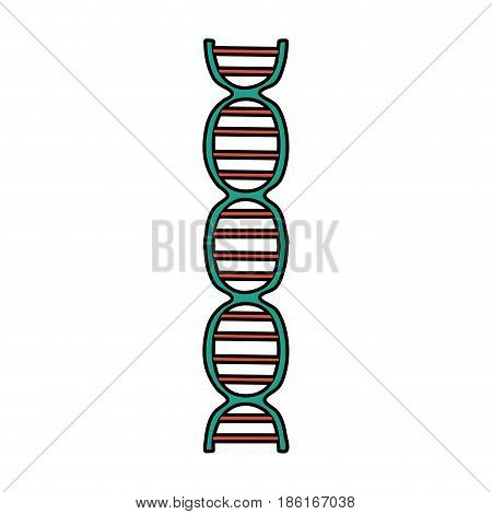 dna strand icon image vector illustration design