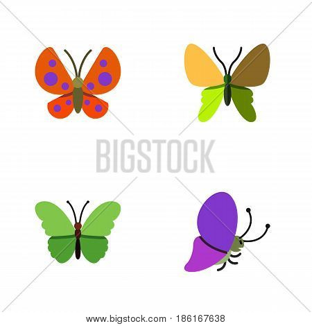 Flat Monarch Set Of Moth, Beauty Fly, Summer Insect And Other Vector Objects. Also Includes Monarch, Moth, Butterfly Elements.