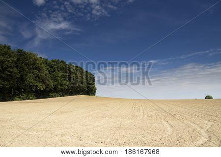 Barren plain on a hillside near Ubachsberg in the Dutch province Limburg