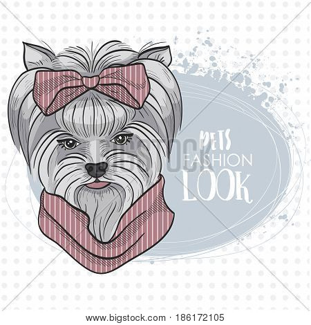 Vector pets fashion look, elegant dog womans face with big hear bow and scarf