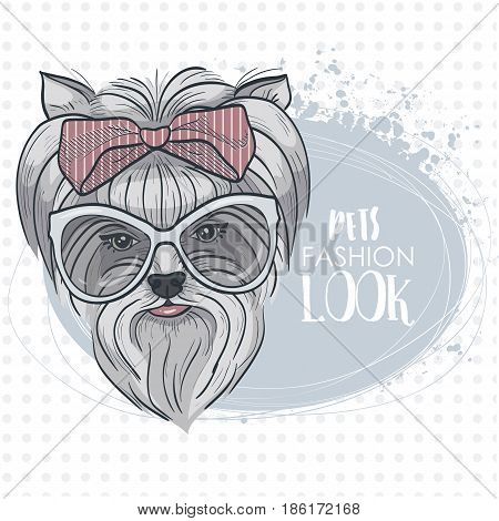 Vector pets fashion look, elegant dog woman's face with big hear bow and sunglasses