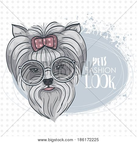Vector pets fashion look, elegant dog woman's face with bow and circle sunglasses
