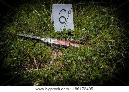 The Crime Scene, Murder, Investigation, Bloody Knife On The Grass, In The Course Of An Investigation