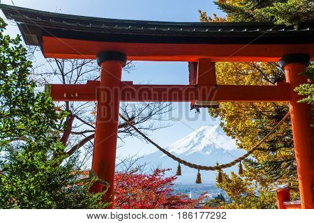 Torii, maple tree and Mount Fuji in Japan