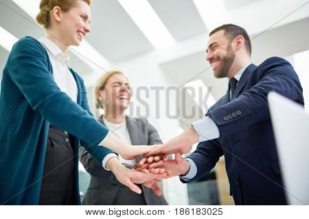 Successful business team keeping their palms on top of each other