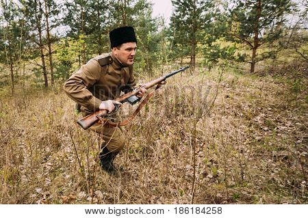 Pribor, Belarus - April 24, 2016: Re-enactor Dressed As Soviet Russian Red Army Infantry Soldier Of World War II Running In Attack With Rifle In Forest At Spring Season.