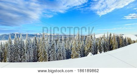Winter Mountain Landscape (panorama)