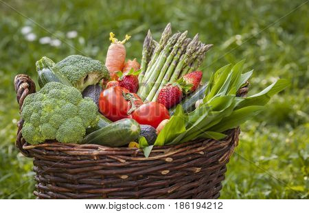 Fresh Mixed Vegetables Basked On The Garden Background