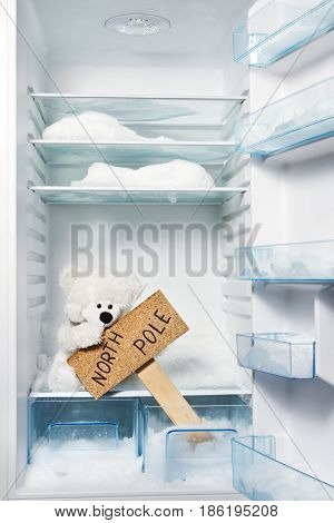 Polar bear in refrigerator with North Pole sign. Global warming problem