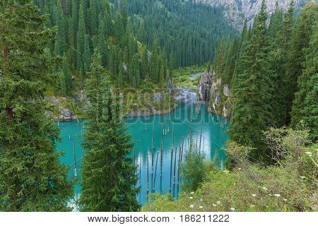 Mountain river flowing into the Kaindy Lake in Tien Shan mountain system the natural beauty of Kazakhstan
