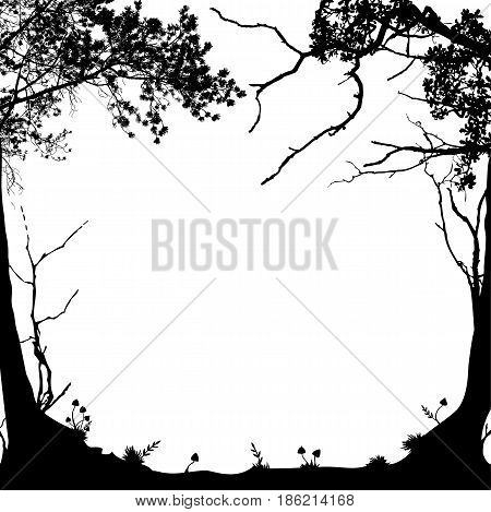 vector frame with forest landscape in black and white