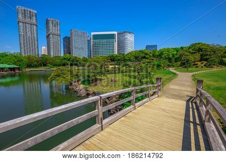 Wooden path in Hamarikyu Gardens with buildings of Shiodome-Shimbashi District on background. Hama Rikyu is a large beautiful landscape garden in Chuo district, Sumida River, Tokyo, Japan.