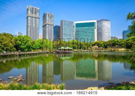Modern buildings of Shiodome in Shimbashi district on background, reflection of Hamarikyu Gardens. Hama Rikyu is a large, attractive landscape garden in Tokyo, Chuo district, Sumida River, Japan.