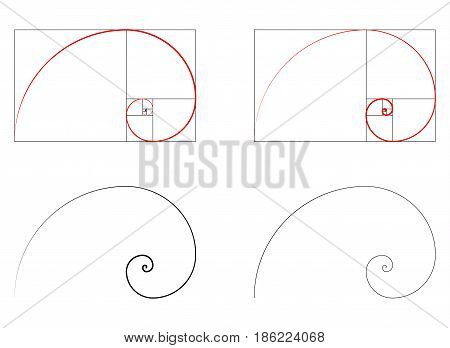 Golden ratio spiral section  set  vector illustration