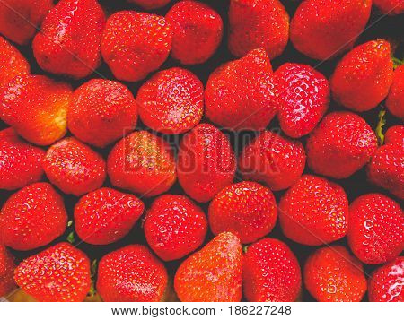 Strawberries Fruits, Faded Vintage Look