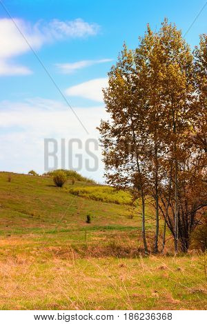 Autumn colors under a beautiful blue sky with clouds around anyone and cleanly
