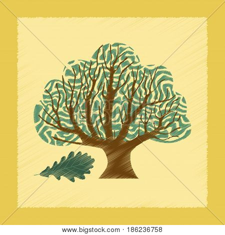 flat shading style Illustrations of plant Quercus