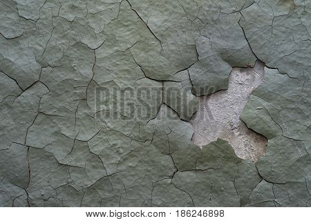 The faded greenish cracked old plaster on the white wall the texture of the ancient crumbling wall.