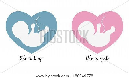 Ultrasonography baby icons on the heart background with text. Vector illustration.