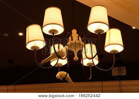Designer lamp - Il Patio Restaurant - Fashion House Outlet - Chernaya Gryaz, Solnechnogorsk district, Moscow region, Russia
