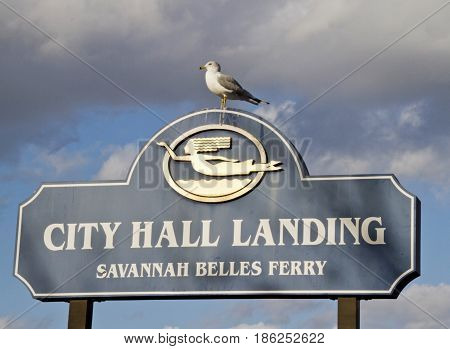 Savannah, Georgia, USA - January 20, 2017: The Savannah City Hall Landing / Savannah Belles Ferry Landing Sign with a noble looking seagull perched on top and dramatic clouds behind it