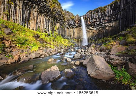 Svartifoss waterfall surrounded by basalt columns in the south of Iceland