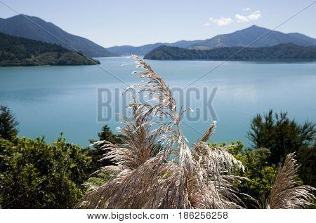View Marlborough New Zealand