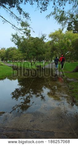 Two men walking in the La Carolina park next to a large puddle of water after the rain. Quito - Ecuador
