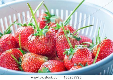 Fresh strawberries in thr white plastic colander