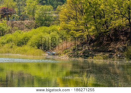 Landscape of river bank with trees and bushes on the riverbank and a small boat next to bank.