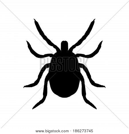 Silhouette of mite. Top view. Realistic incsect isolated. Line graphic design. Black and white icon Vector illustration.