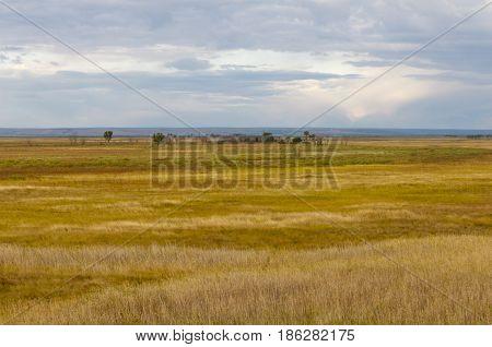 Marsh Or Open Wetland