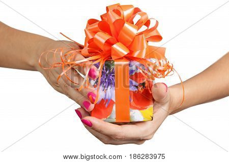 woman hands are holding a gift close up isoated on the white background