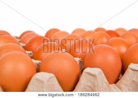 Carton of fresh brown eggs isolated on the white background