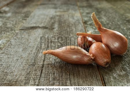 Shallot bow closeup on a blurred wooden background