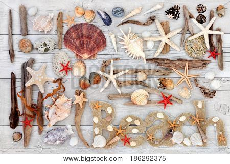 Abstract collage with beach sign, seashells, driftwood, seaweed and rocks on distressed white wood background.