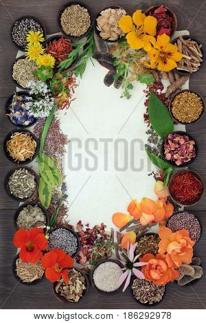 Herbal medicine selection of fresh and dried herbs and flowers forming a border on parchment paper over oak background.