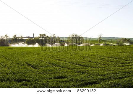agriculture and irrigation, irrigation tools and equipment, irrigation of wheat field to get the yield,