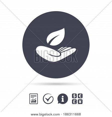 Nature insurance sign icon. Hand holds leaf symbol. Environmental protection symbol. Report document, information and check tick icons. Currency exchange. Vector