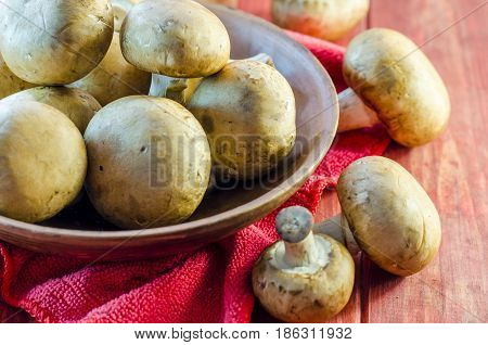 Fresh royal champignons in a bowl on a close-up table