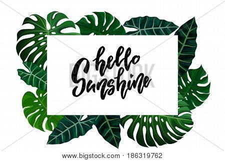 Frame with green tropical exotic banana monstera palm leaves on style background and hand drawn note hello sunshine. Fabric, wrapping paper print. Vector illustration stock vector.