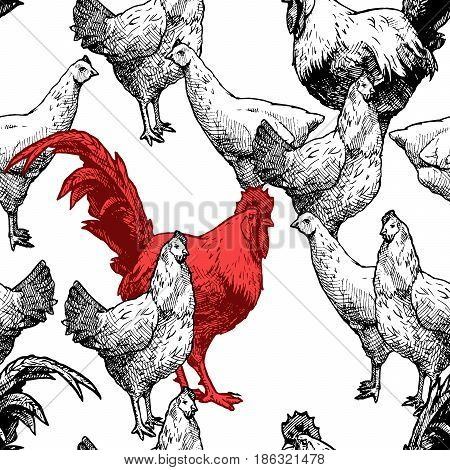 Seamless pattern with hen and red cock. Vector illustration in vintage engraved style on white background.
