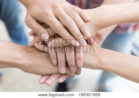 Young College Student Joining Hand, Business Team Touching Hands Together - Unity, Harmony, Teamwork