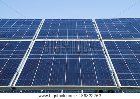 In the photo, the solar cells collected in the section