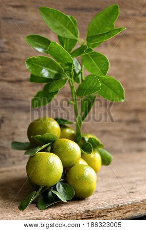 Orange or Citrus Japonica Thunb on wood table.