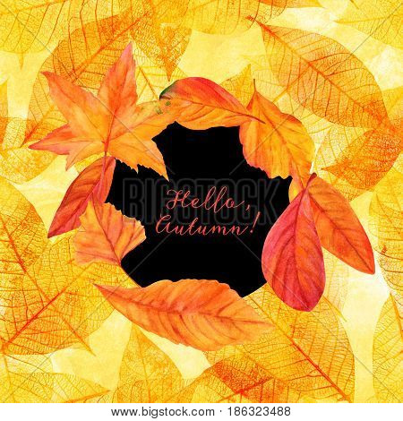 Hello, Autumn design with vibrant fall leaves, yellow and orange. An artistic template for a card, flier, or invitation