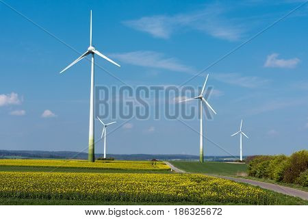 Wind energy in a blooming rapeseed field seen in rural Germany